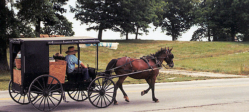 Amish kentucky