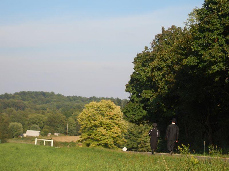 New Bedford Ohio Amish couple