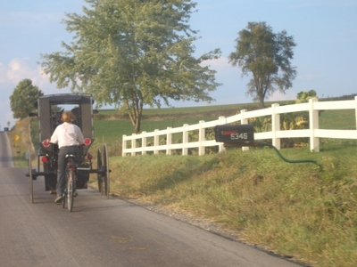 Amish_buggy_bike_holmes_county