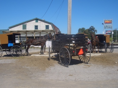 New_wilmington_amish_buggies
