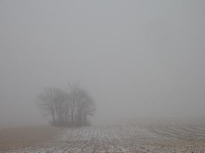 Lancaster_field