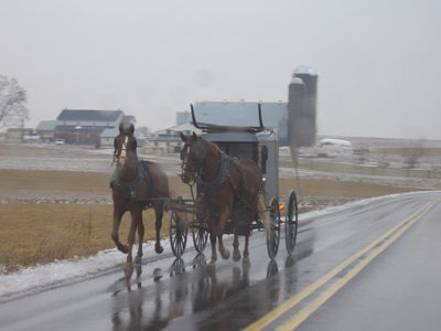 Lancaster_two_horse_buggy